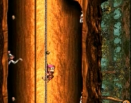 donkeykongcountry3_screen003