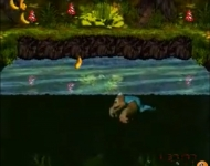 donkeykongcountry3_screen009