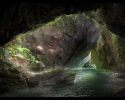 tiny-shark-interactive-swamp-cave