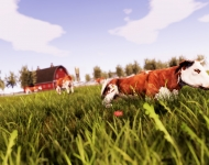 Real Farm_Screenshot_Cow Field 2