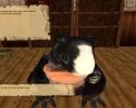 tdg_demo-2012-03-28-15-24-09-18